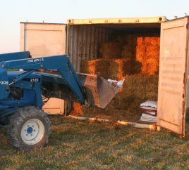 Shipping Containers as Seed/Hay Storage
